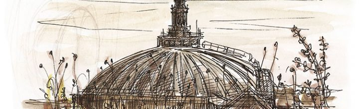 Dome sketching from an Edinburgh roof terrace garden